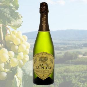 Vía de la Plata Chardonnay Brut. Vía de la Plata. Cava de Extremadura